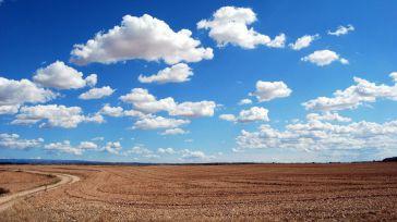 El estado del estado (V): Nueva explotación agrícola