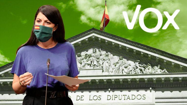 Vox advierte al Gobierno que recurrirá la 'totalitaria' Ley de Memoria Democrática ante el Tribunal Constitucional