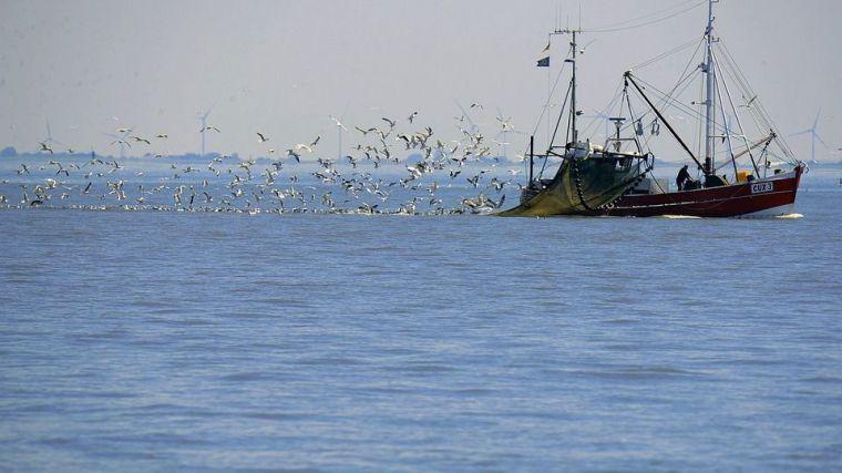 Crímenes en el mar: Una amenaza para la paz y seguridad mundial