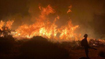 Incendio en Ávila: El cuarto más grave desde que hay registros en España