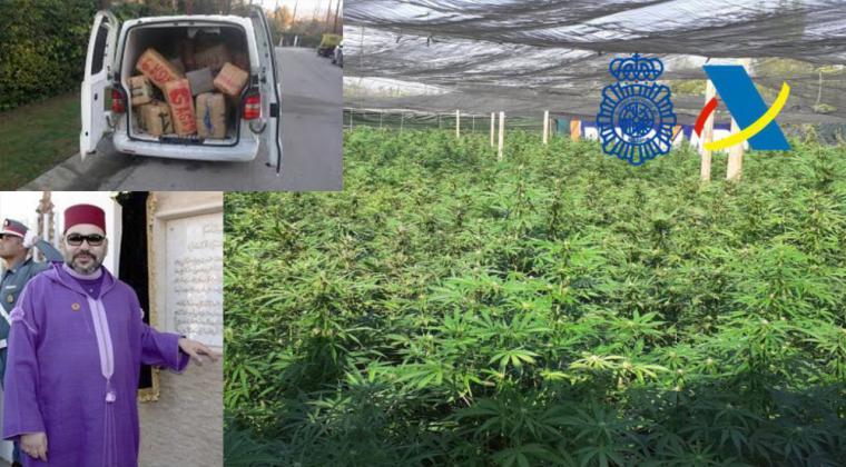 Marruecos muy molesto con las plantaciones de cannabis en España