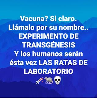 """Moderna admite que su matarratas transgénico (""""vacuna"""") es una reprogramación tecnológica de los seres humanos"""