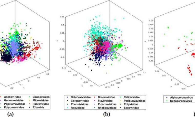 Los investigadores descifran la firma del genoma COVID-19